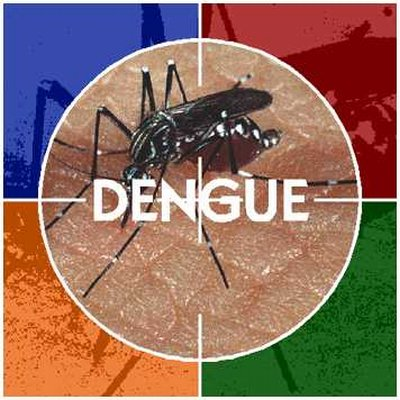prevencion-dengue