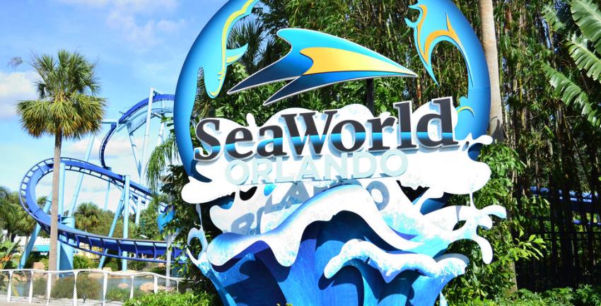 Muere una orca de 30 años en parque SeaWorld de Orlando