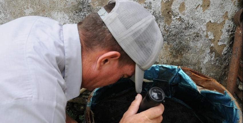 Más de 290 nuevos focos del mosquito Aedes aegypti en 2019, en dos áreas de Trinidad, uno de los principales polos turísticos de Cuba