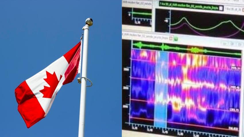 Diplomáticos canadienses afectados por los ataques acústicos en Cuba demandan al gobierno de Canadá por $28 millones