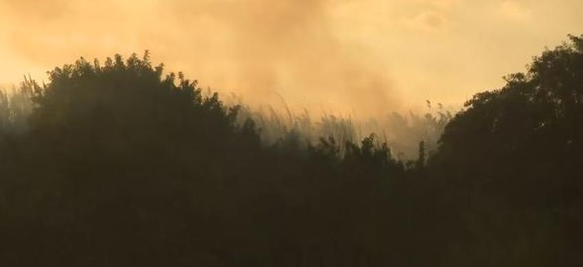 Incendios forestales arden al oeste de Miami-Dade