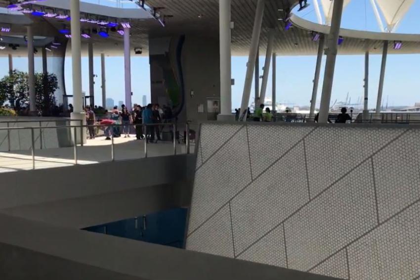 Dos museos de Miami ofrecen entradas gratis a empleados federales sin paga durante el cierre del gobierno