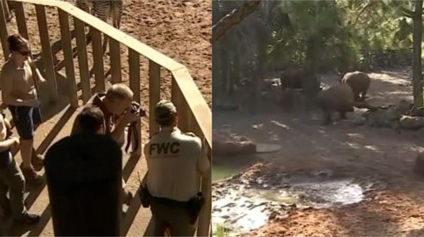 Un niño cae en una exhibición de rinocerontes en un zoológico del centro de la Florida