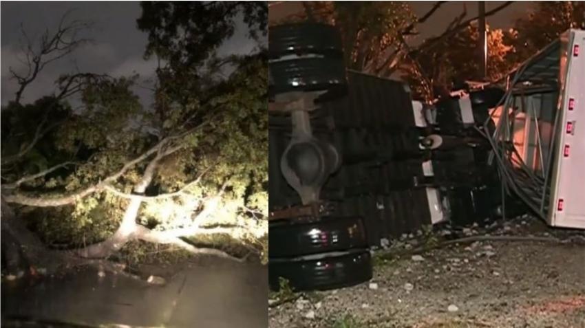 Tornado en Hialeah derriba árboles y vuelca vehículos a su paso