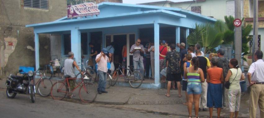 """Gobierno cubano admite el desabastecimiento de huevos en el país, y propone la """"siembra de plantas proteicas"""""""