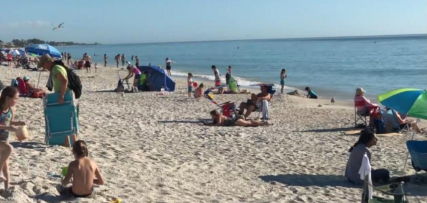 Las aguas costeras de Florida libres de marea roja, según muestras recolectadas por la FWC