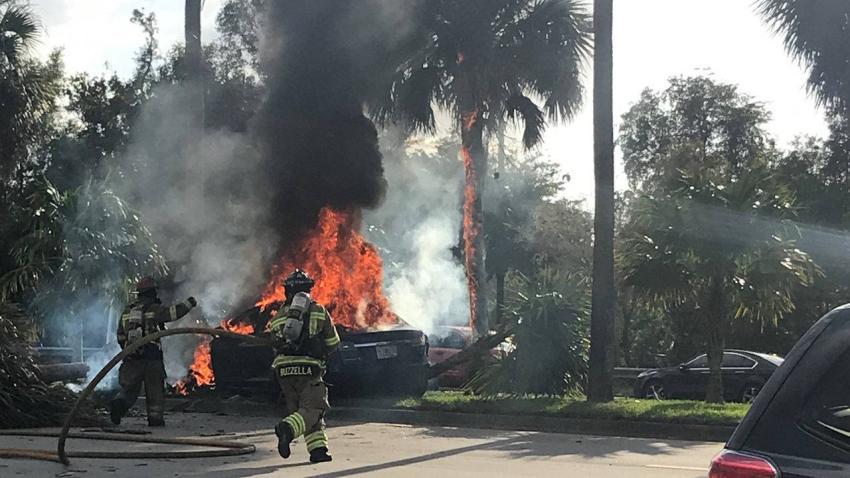 Tesla se estrella contra un árbol en Davie matando al conductor