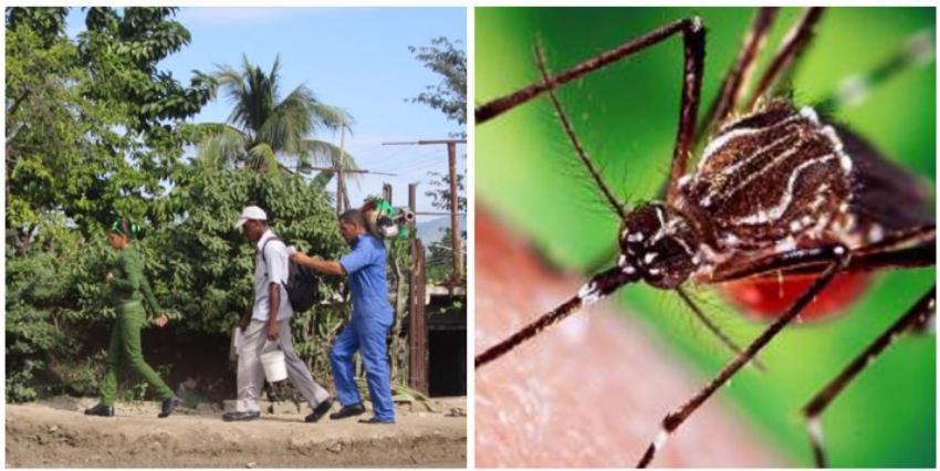 Aumentan los casos de dengue, zika, chikunguña y fiebre amarilla en Santiago de Cuba