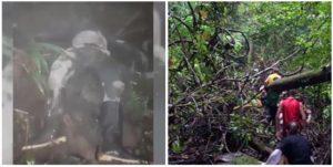 Migrante cubano murió de un infarto intentando cruzar la peligrosa selva conocida como el Tapón del Darién
