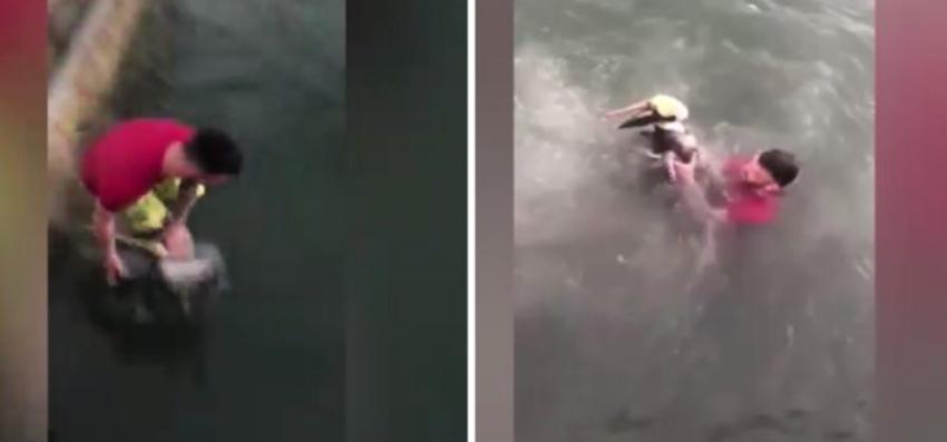 Vídeo de un hombre saltando sobre un pelícano en los Cayos de la Florida indigna a usuarios en la red