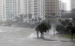 Proyecto de ley en el Senado busca instalar líneas eléctricas soterradas en Miami para protección en caso de huracanes