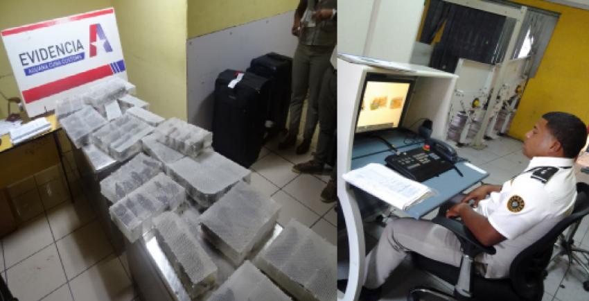 La Aduana de Cuba decomisa tocororos, cacatillos y otros centenares de aves en el control de equipaje de un vuelo internacional