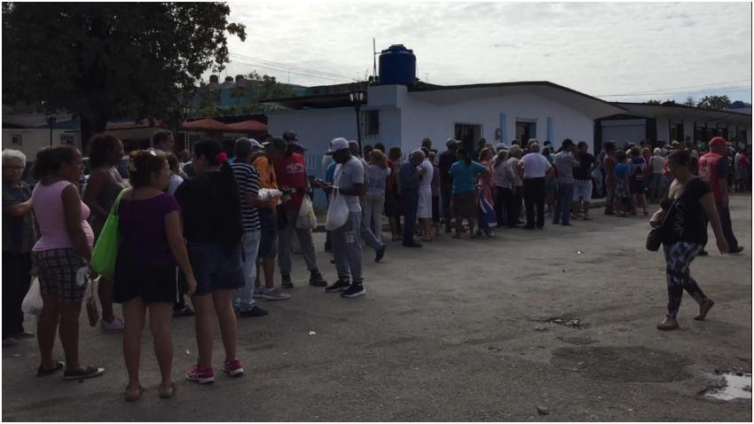 Enormes colas para comprar huevo en el barrio de 10 de Octubre