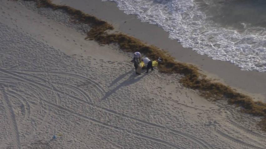 Encuentran a un hombre muerto flotando en el mar en Miami Beach