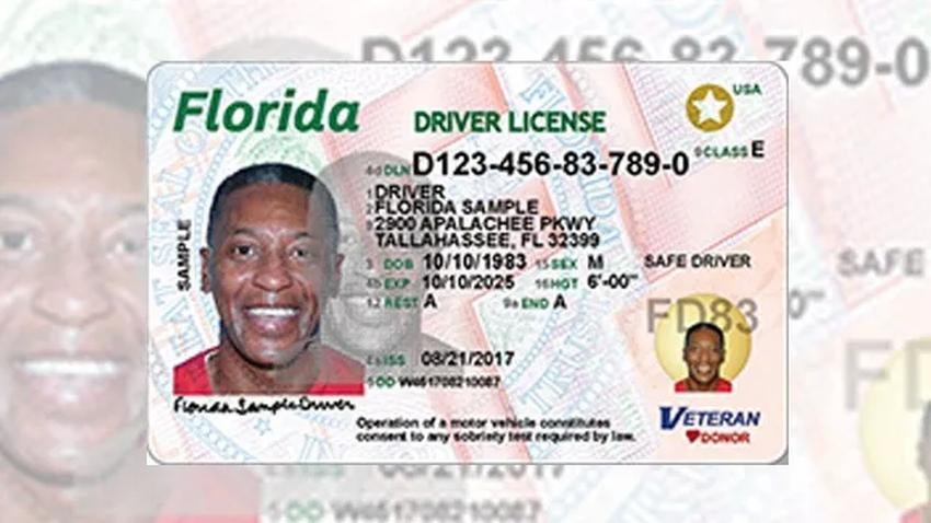 Para octubre del 2020 debes tener tu nueva licencia de conducir con la estrella dorada para poder viajar dentro de Estados Unidos