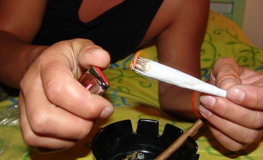 Hombre de la Florida llama a la policía para reportar que su compañero de piso le roba la marihuana