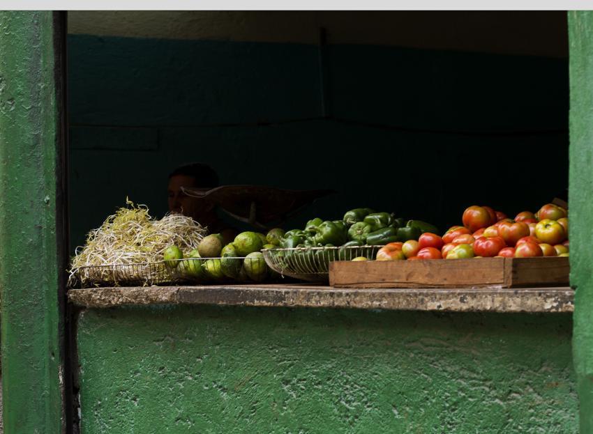 Gobierno de Cuba anuncia que dará acceso a cubanos con negocios privados al mercado mayorista