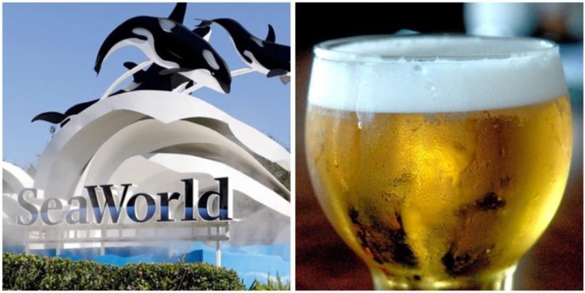 El parque temático SeaWorld Orlando ofrecerá cerveza de cortesía durante todo el verano