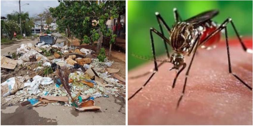 Ante la inminente llegada del verano cuando prolifera el mosquito Aedes aegypti, así vemos las calles de La Habana inundadas de basura