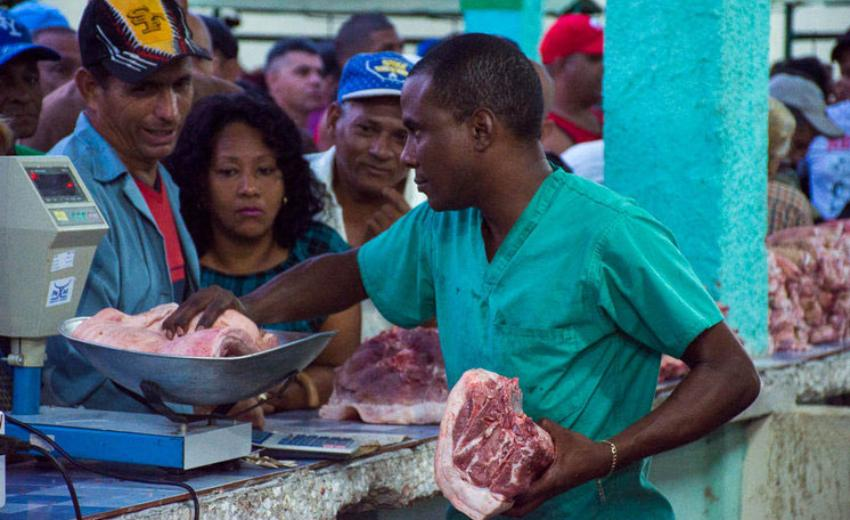 Ante la escasez de carne de cerdo en Ciego de Ávila y Santa Clara los precios se disparan