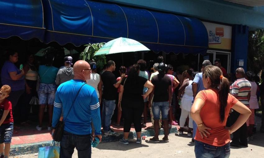 Siguen las colas para comprar pollo: La gente esperó horas para que surtieran en el mercado de 5ta y 42 en La Habana
