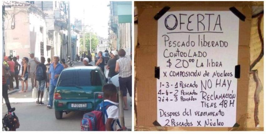 """Gobierno cubano vende pescado """"liberado-controlado"""": uno para una familia de 3 personas, a 20 pesos la libra"""