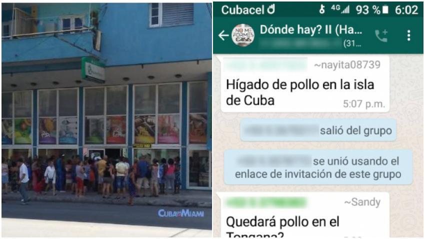 Cubanos crean grupo de WhatsApp para avisarse cuando sacan comida en algún mercado