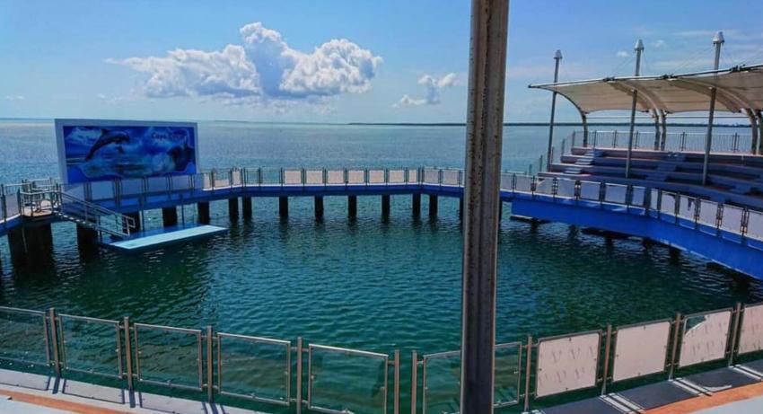 El Acuario-Delfinario más grande de Cuba acaba de abrir sus puertas en Cayo Coco