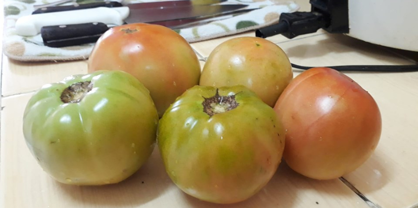 """Los precios de los productos en Cuba siguen por las nubes: """"5 tomates por 40 pesos, 1lb=20 CUP"""""""