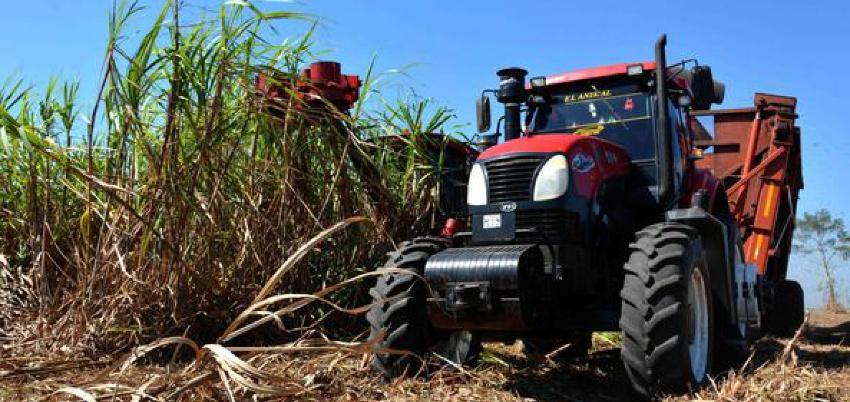 Desastre: Cuba produjo 1.3 millones de toneladas de azúcar, una de las menores cosechas en 120 años