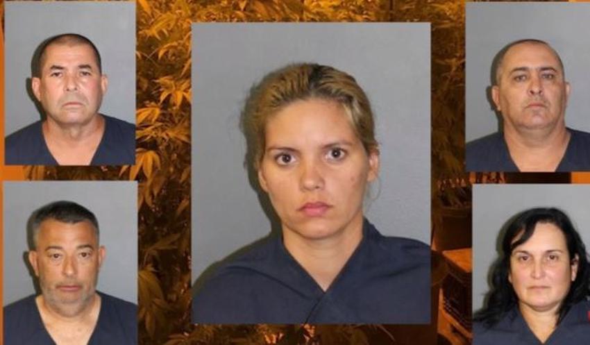 Arrestan cinco cubanos en Colorado vinculados al cultivo ilegal de marihuana