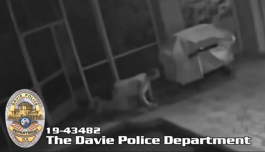 """Hombre queda captado en cámara tocándose mientras """"miraba hueco"""" en una casa del sur de Florida"""