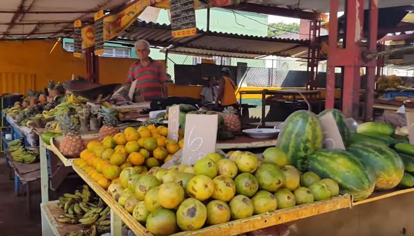 Falta de combustible en Cuba  afectará grandemente producción y distribución de alimentos, anuncia el Gobierno