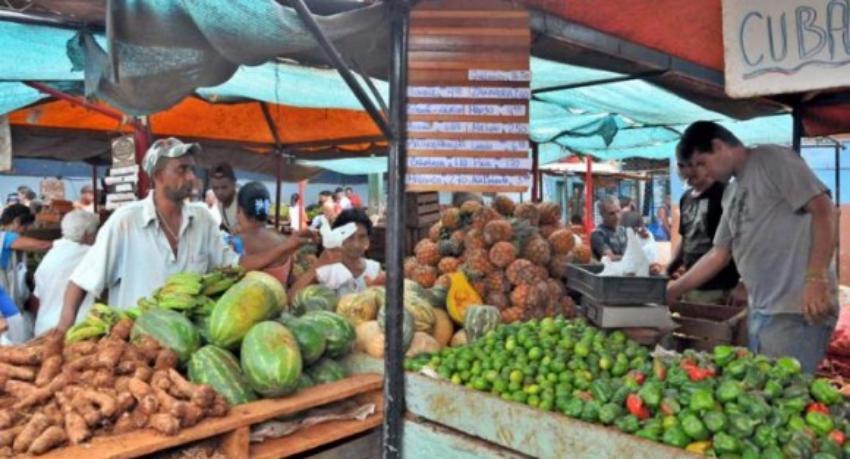 Cubanos se quejan de los fuertes precios que tienen los productos agropecuarios