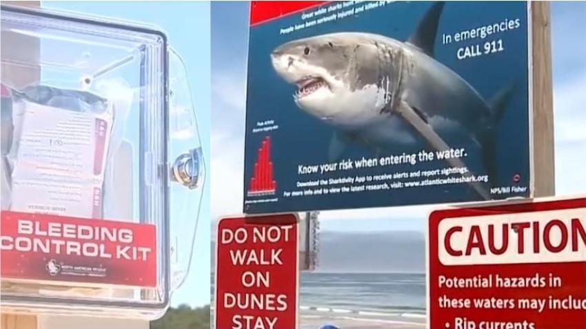 Tiburones en el agua llevan a la clausura temporal de varias playas en Massachusetts