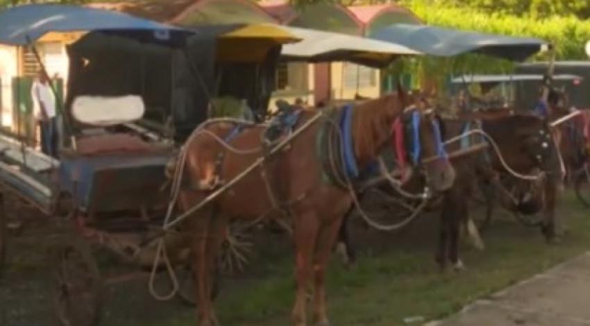 """Decomisan coches de caballos en Las Tunas por """"adulterar los precios"""" de pasajes"""