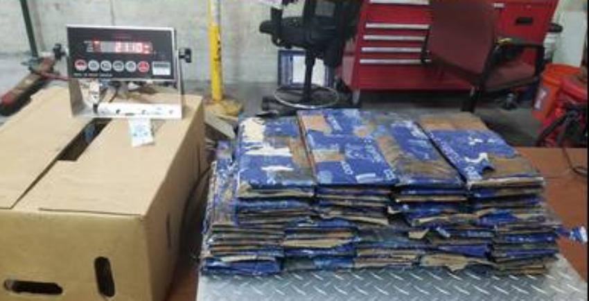 Encuentran 50 libras de cocaína escondidas dentro de cajas de naranjas, en Port Everglades