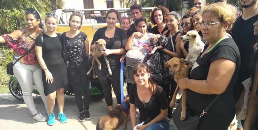 Activistas denuncian las autoridades de Zoonosis se burlan de ellos con el tema de la protección animal