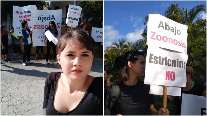 Cubanos salen a protestar frente a instalación de Zoonosis en La Habana por la matanza de perros