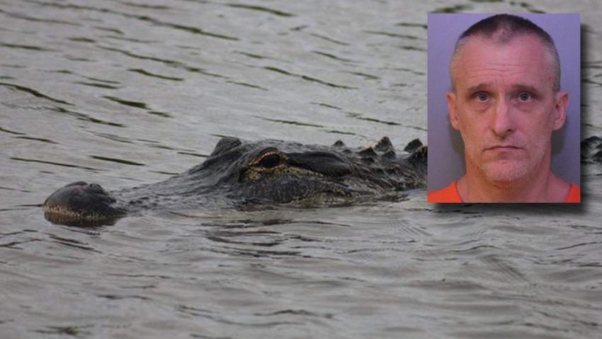 Un hombre de Florida encontrado comido por un caimán en realidad habría muerto de una sobredosis, según las autoridades