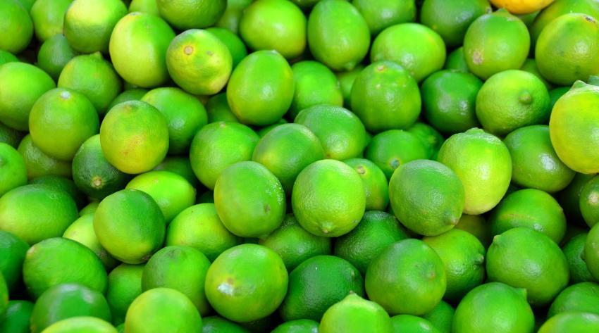 Gobierno de Cuba presume de exportación de limones y los cubanos explotan en redes sociales