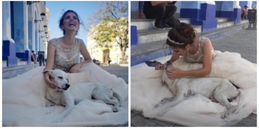 Los Quince De Firulais Y El Hermoso Gesto De Una Jovencita Cubana Llamada Olivia