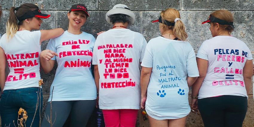 """Para noviembre """"una Ley de Bienestar Animal"""" debe ser aprobada en Cuba"""