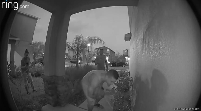 Cámara de vigilancia capta momento en que un grupo de extraños agarra un caimán en la entrada de una casa en Florida
