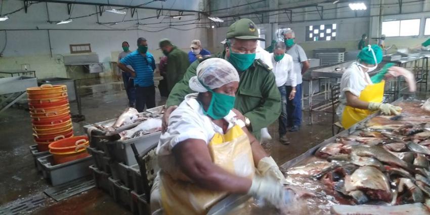 Cuba distribuye embutidos y picadillo de mala calidad a la población y exporta el pescado