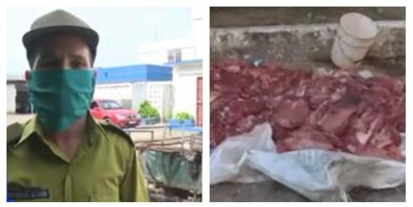 La policía confisca 514 libras de carne de res en un operativo en Pinar del Río, y detiene a tres personas