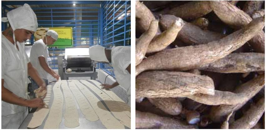 Camagüey oferta lasaña de casabe en establecimientos estatales, en medio de la crisis alimenticia