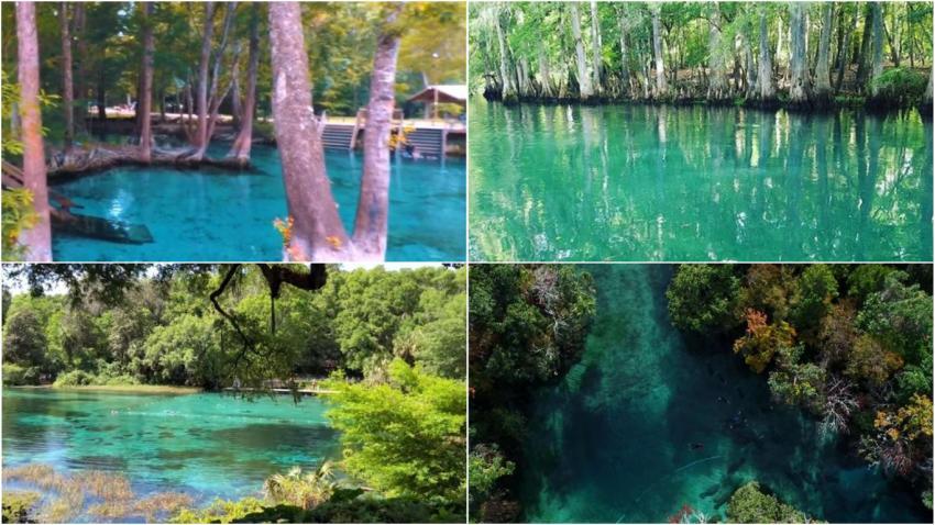 10 piscinas naturales en Florida para disfrutar del verano