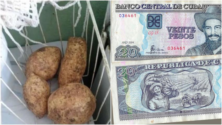 Indignación por la venta de boniatos a precios de escándalo en Cuba; 4 por 40 pesos