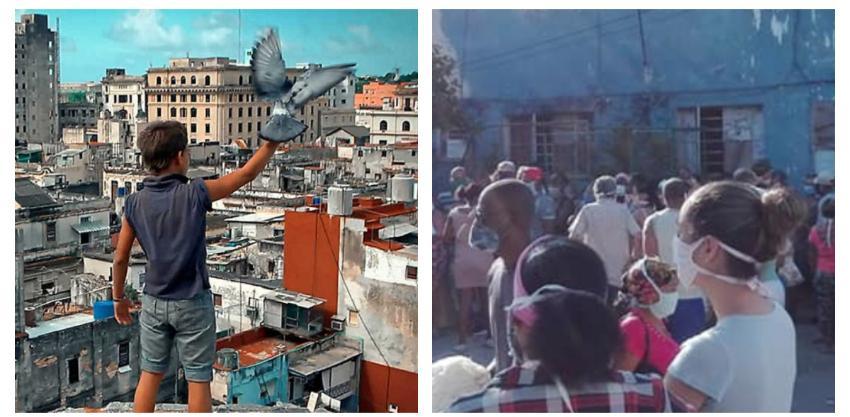 Cineasta cubano incómodo luego de que el Granma usara una película suya para arremeter contra los coleros